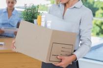 Покупка коттеджа для высокопоставленного чиновника в Липецкой области обернулась увольнением