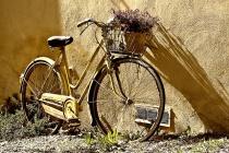 Большинство читателей «Липецких новостей» готовы променять автомобиль на велосипед – опрос
