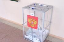 Услуги по размещению агитационных материалов кандидатам на довыборах депутатов в городской Совет Липецка