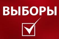 Информационная кампания к выборам главы Липецкой области обойдется в миллион рублей