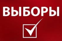 Прайс на услуги по размещению агитационных материалов кандидатам на выборах депутатов представительных органов муниципальных образований в Липецкой области