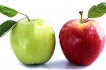 Польские яблоки через два года заменят фрукты из России