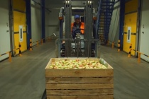 В Липецкой области приступили к строительству логистического центра и фруктохранилища за 1,6 млрд рублей