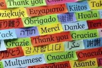 У большинства читателей «Липецких новостей» нет способности к языкам - опрос