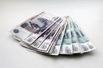 Руководитель липецкого мясокомбината нашел деньги на зарплату работникам после возбуждения уголовного дела