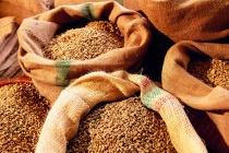 Липецкое «Куриное царство» потеряло на покупке некачественного зерна 1,2 млн рублей