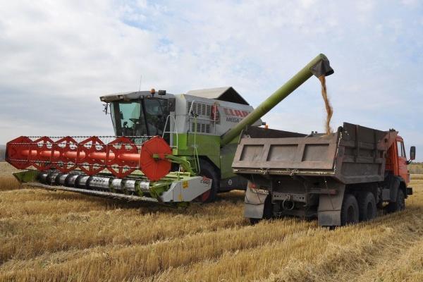 Липецкая агрофирма «ТРИО» не спешит с импортозамещением