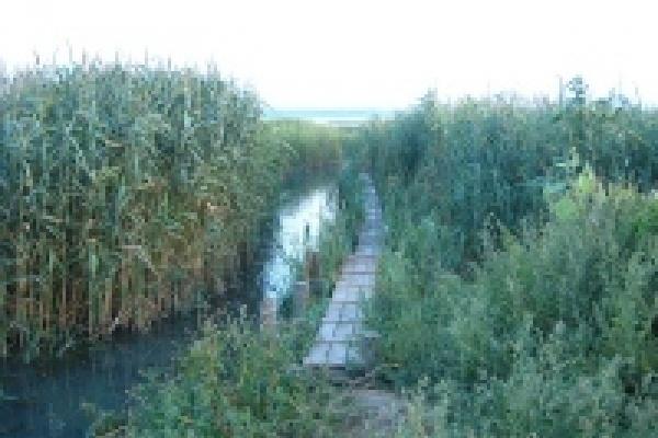В Липецкой области расчищают малые реки