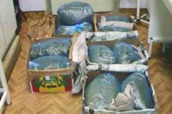 В Липецке в руки милиции попали почти 12 кг зелья