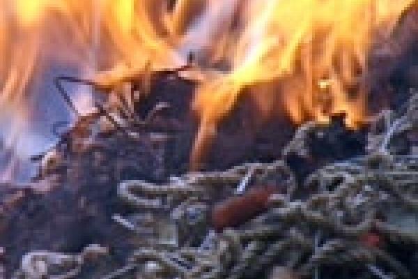 Милиционеры сожгли сети