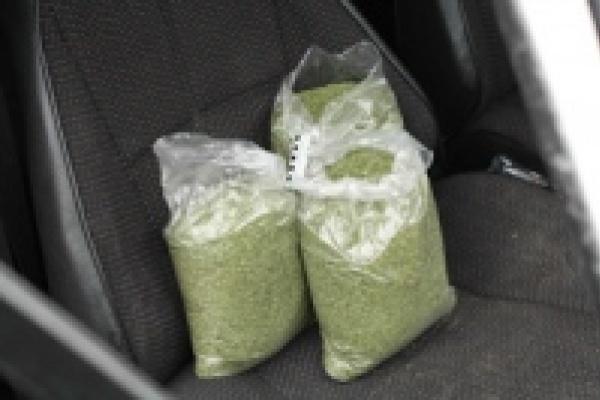 Больше двух килограммов «травки» попало в руки милиции