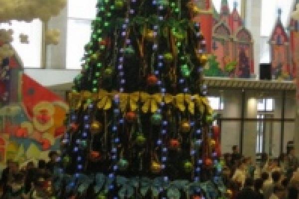 Сироты и вундеркинды достойно встретят Новый год с помощью областной казны