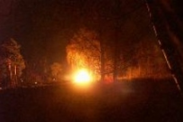 В пожаре погиб мужчина и пострадала его мать