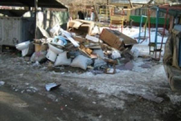 Экологи исследовали липецкие контейнеры