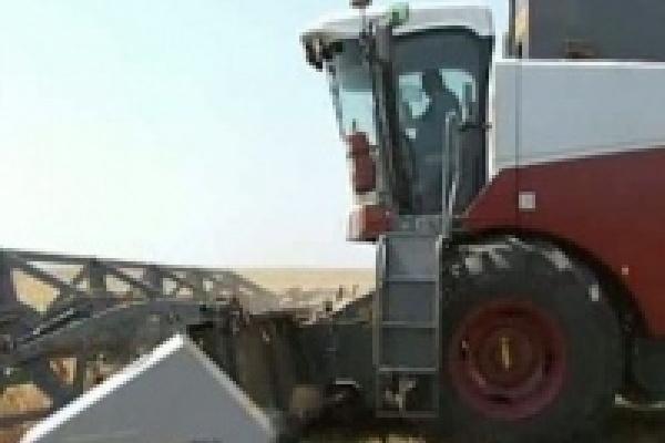Грязинские фермеры выбирают отечественные комбайны