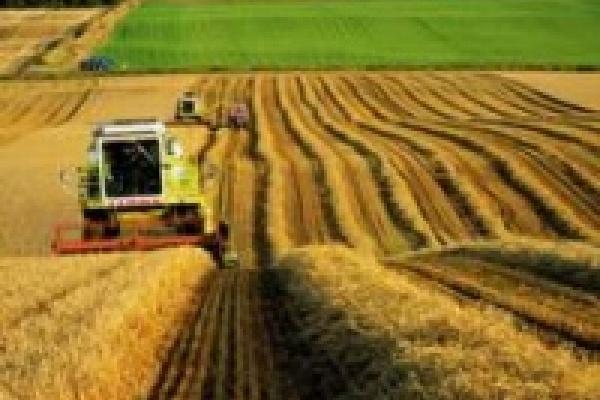 В Липецкой области открылся аграрный форум