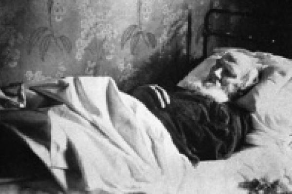 Станцию, где скончался Толстой, откроют после реставрации к 20 ноября