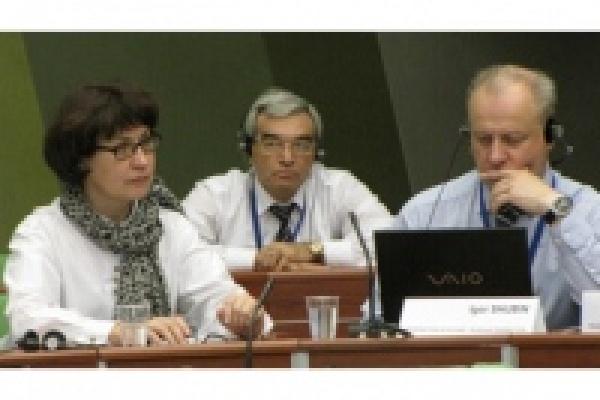 Михаил Гулевский будет следить за выборами в Европе
