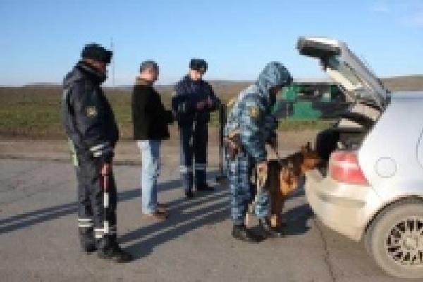 Липецкие милиционеры задержали в Чечне... китайцев-нелегалов