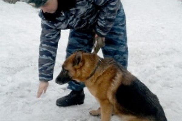 Похитителей коньяка нашли с помощью собаки