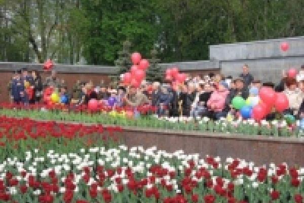 Ко Дню Победы в Липецке расцветут 80 тысяч тюльпанов