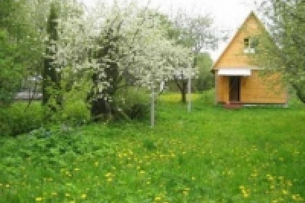 Мэрия Липецка оказывает помощь садоводческим товариществам