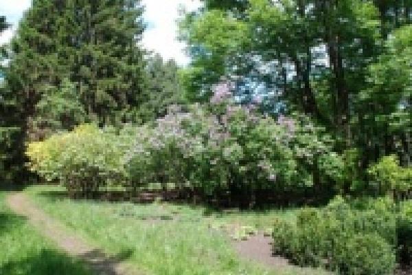В Липецкой области создается природный парк