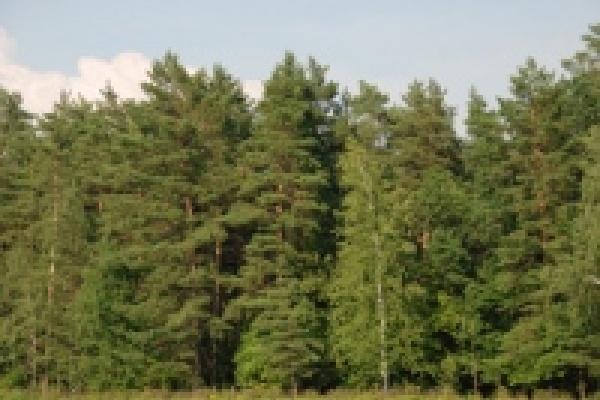 На обследование заповедных территорий в Липецкой области выделяют более 2 млн. рублей