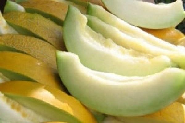 Губернаторская комиссия проверит качество арбузов и дынь