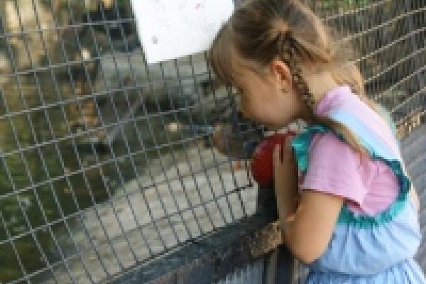 Липецкий зоопарк отмечает 38-й день рождения