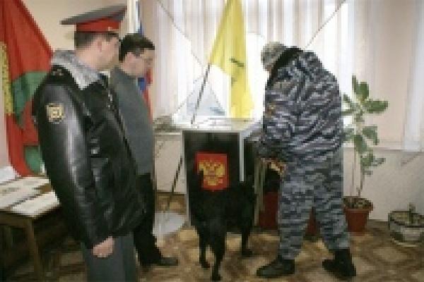 Липецкая полиция в день выборов перешла на усиленный вариант несения службы