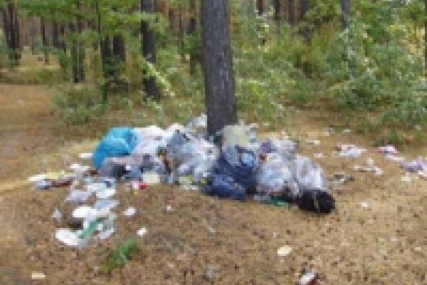 Загрязнители природы заплатили в 2011 году более 6,5 миллионов рублей штрафов