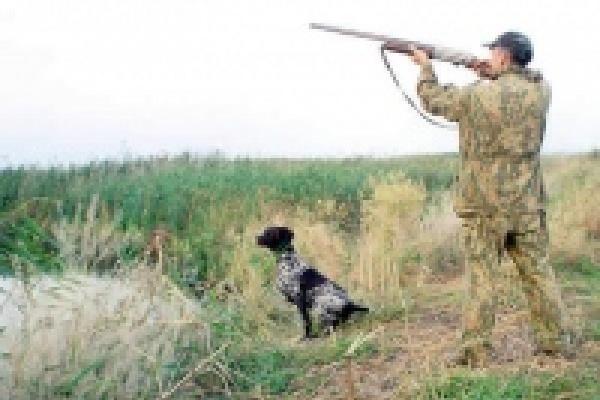 В Липецкой области охотники расчехлят ружья