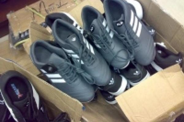 Полицейские изъяли 228 пар контрафактной обуви