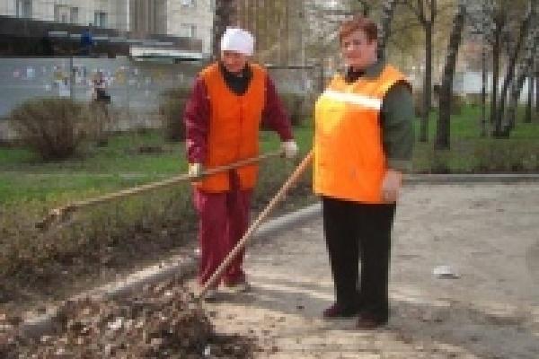 В понедельник сотрудники липецкого «Зеленхоза» начнут оформлять первые городские цветники