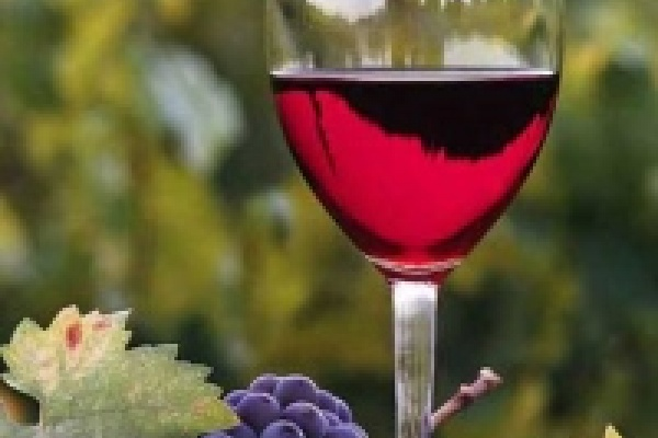 Санитарные врачи забраковали 1 процент проверенного алкоголя