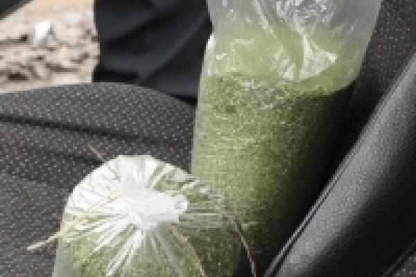 Три килограмма «травки» в машине