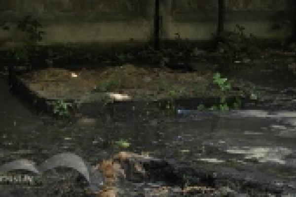 Жители улицы Нестерова,12 боятся обрушения их дома