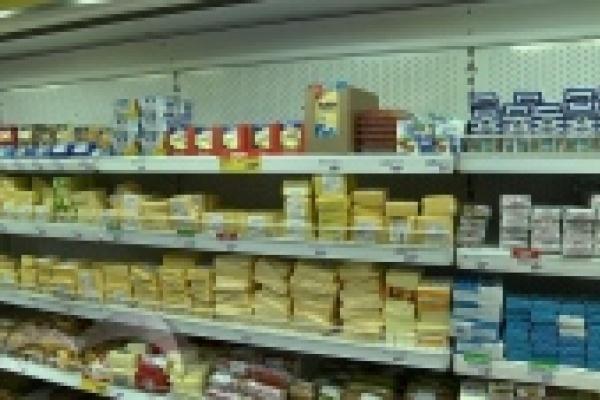 Качество литовского сыра жители Липецка проверяют на кошках