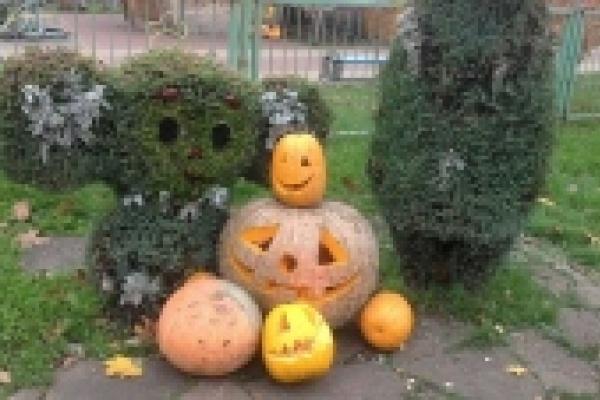 Евгений Павлов: Ни в одной школе Липецка Хэллоуин организованно отмечать не будут