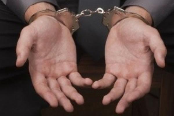 В Липецке задержали преступника, укравшего больше миллиарда