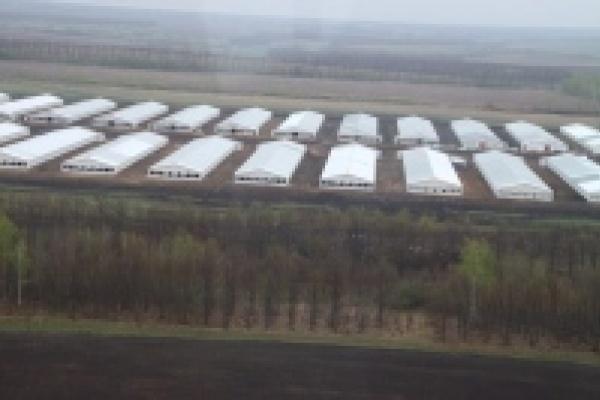 В Липецке обсудят инвестиционную деятельность Группы «Черкизово»