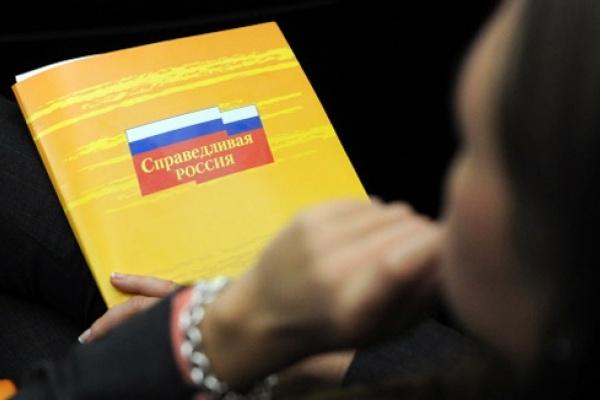 «Справедливая Россия» не будет выдвигать кандидата в губернаторы Липецкой области