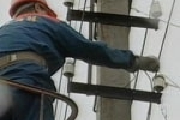 Энергетики начали «зачистку» на окраинах Липецка