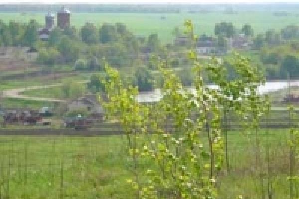 В Липецкой области начался конкурс на создание особых экономических зон