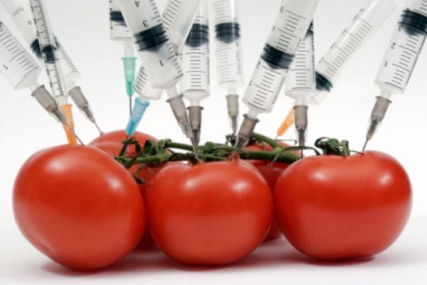 «Черкизово» использует при производстве продукции корма с ГМО