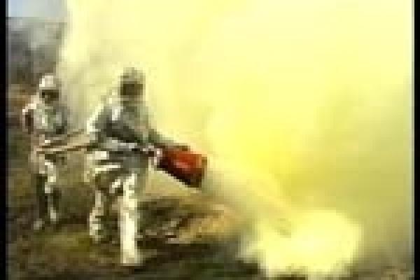 Пожар в одном из задонских монастырей