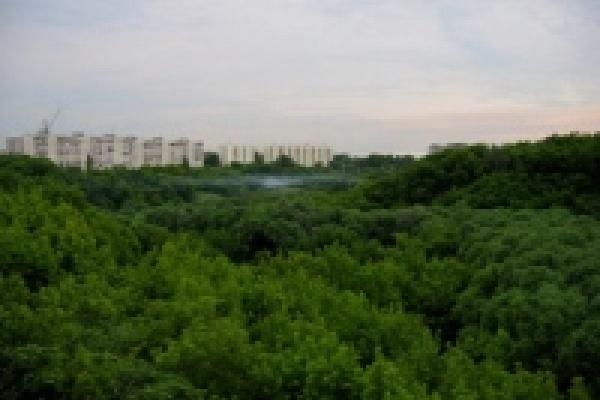 В Липецке появятся особо охраняемые природные территории