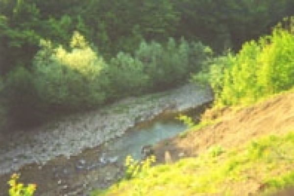 Река Кузьминка станет чище.