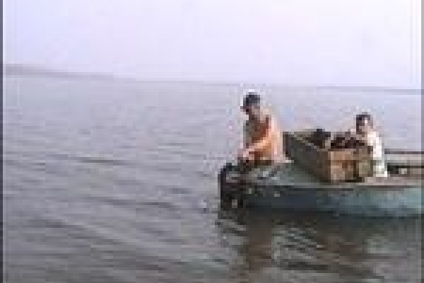 Полмиллиона рублей за незаконную рыбалку и охоту